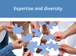 Expertise and diversity